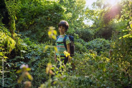 Fototapeta A boy with a backpack walks in the meadow