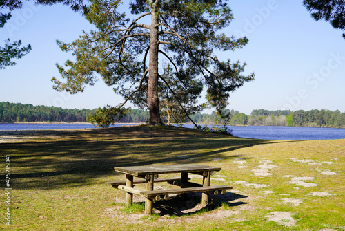 Obraz picnic table sits ready for picnic aside lake in Hostens gironde france - fototapety do salonu