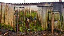 Moos Bedeckte Holzhütte