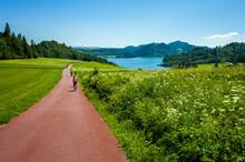 Cycling Around Czorsztynskie Lake Near Niedzica Village On Sunny Spring Day, Pieniny Mountains, Poland