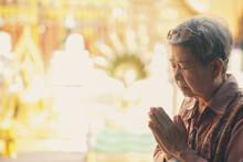 Old Asian Senior Woman Traveler Tourist Praying At Buddhist Temple.