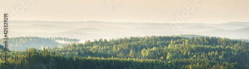 Fototapeta The hills of evergreen pine forest. Saimaa lake, Finland. Breathtaking panoramic aerial view, picturesque scenery. Golden sunlight. Nature, environmental conservation, ecotourism, travel destinations obraz