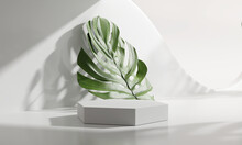 Blank White Product Display Podium With Monstera Leaf . 3d Rendering