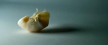 Healthy Garlic On A White Background. Garlic Spice On White.