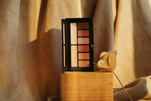 Colorful Eyeshadow Palette Staying On The Wood On Brown Nature Background. Fashionable Cosmetics Makeup For Eyes.