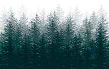 Silhouette Of Forest, Forest Background, Nature, Landscape. Evergreen Coniferous Trees.Vector Illustration