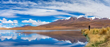 The Traveler Takes Pictures Of Pink Flamingo In The Lake. Lake Hedionda In Bolivia. Panoramic View.