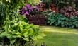 natura funkia biały zielony ogród liść ozdobnych wzór duża liść roślina ozdobny liści srokaty tekstura lato flora koło bujny kropla bylina piękny blisko w górę uroda kolor tło krajobrazowe sezon różo