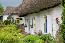 White Cottages With Thatched Roofs And Flower Gardens In Adare, Ireland