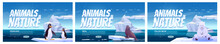 Animals In Nature Cartoon Landing Pages. Wild Penguins, Polar Bear And Seal Sit On Ice Floes In Sea. Antarctica Or North Pole Inhabitants In Outdoor Area, Ocean. Beasts In Fauna Vector Web Banners Set