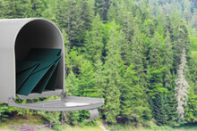 Mail Box With Letters In Forest