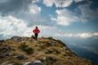 canvas print picture - Womanwanderer auf einem Berggipfel