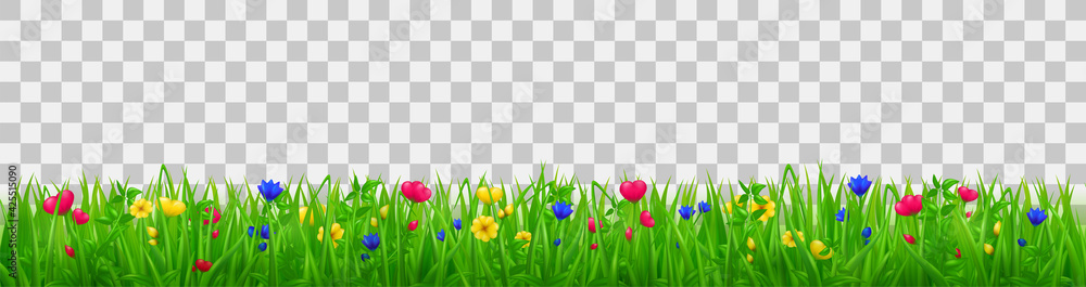 Fototapeta Green grass with flowers, summer or spring meadow