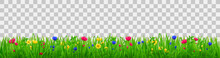 Green Grass With Flowers, Summer Or Spring Meadow