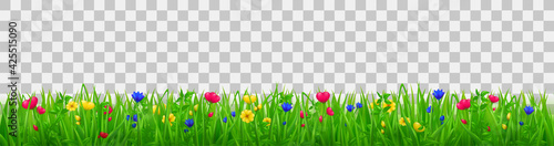 Fotografie, Obraz Green grass with flowers, summer or spring meadow