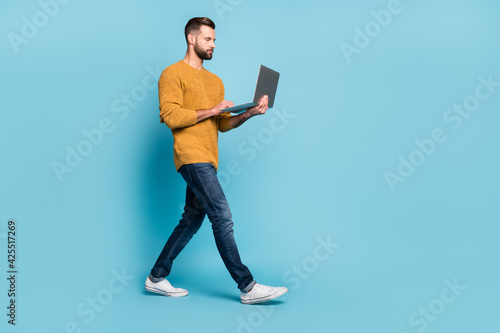 Obraz Full length body size view of attractive skilled focused guy employee going using laptop isolated over bright blue color background - fototapety do salonu