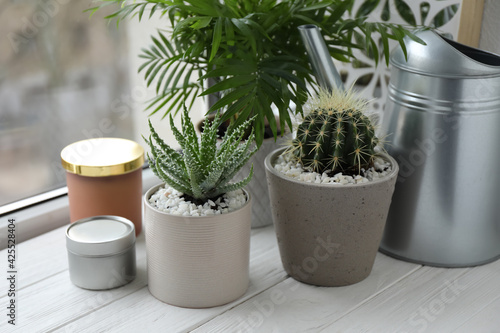 Obraz Beautiful Aloe, Cactus, Chamaedorea in pots with watering can and decor on white wooden windowsill, closeup. Different house plants - fototapety do salonu