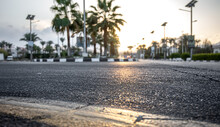 City Asphalt Road With Palm Trees Along The Road At Sunset.