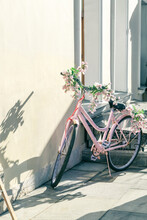 Street Decor, City Beautification, Pink Vintage Retro Bike Decorated With Flowers Stands By The Wall Of The House On A Sunny Day With Beautiful Shadows On The Facade Of The Building