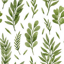 Watercolor Leaves And Branches Seamless Pattern. Green Watercolor Eucalyptus, Ferns And Branches. Botanical Illustration, Isolated On White Background.