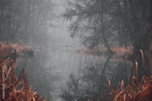 Fototapeta Mroczne jezioro.  obraz