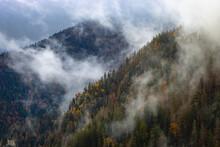 Brume Et Nuage Dans Les Vosges