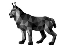 Forest Lynx Vector-isolated Images On A White Background In A Low-poly Style, Amber Color