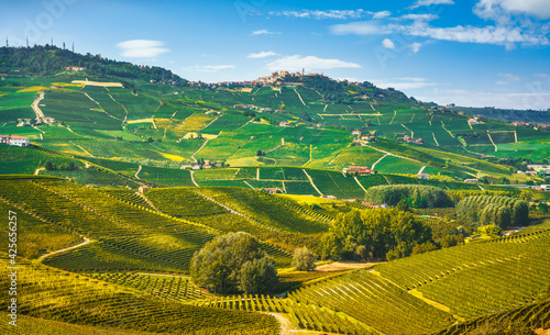 Langhe vineyards landscape, Barolo and La Morra, Piedmont, Italy Europe.