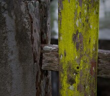 Old Wooden Fence Green Moss