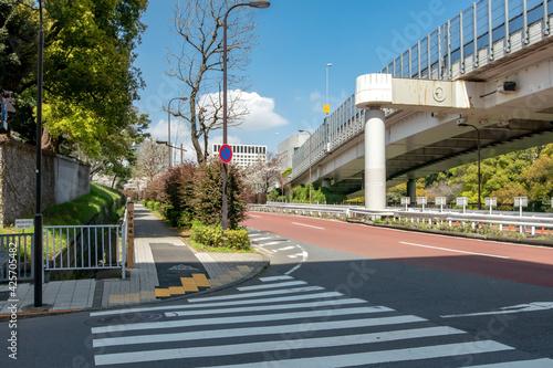 Fototapeta 東京都港区の道路、紀伊国坂