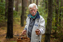 A Close-up Of A Happy Senior Man Collecting Mushrooms In The Forest.