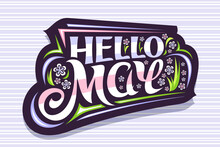 Vector Lettering Hello May, Sticker With Curly Calligraphic Font, Decorative Art Stripes And Illustration Of Colorful Pale Flowers, Spring Time Concept With Swirly Hand Written Lettering Hello May.