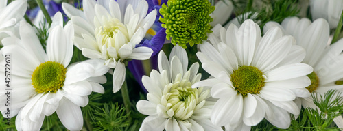 Canvas banner with floral background