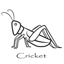 Grasshopper Mantis Logo, Cricket Insect Icon In Trendy Minimal Geometric Line Linear Styleminimal Line Linear Style