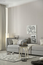 Cozy Living Room Interior With Big Grey Sofa