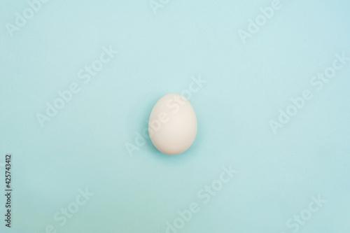 Fototapeta White chicken egg on a blue background.