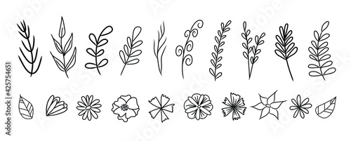 Obraz Set of vector vintage floral elements. Cute set of doodle frames and borders. Elements flowers, branches, swashes and flourishes  - fototapety do salonu