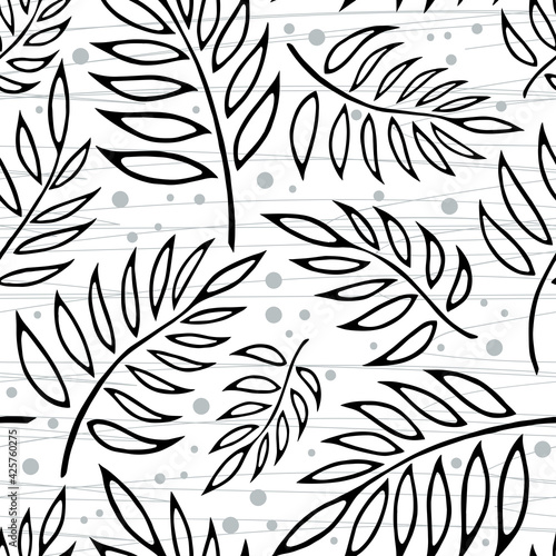 Fototapeta Seamless vector background with different silhouette fern leaves on wight background