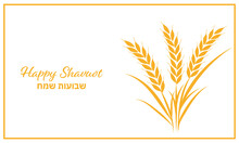 Shavuot, Happy Shavuot, Wheat, Grain, Holiday, Jewish Holiday, Illustration, Vector, Card, Greeting, Greeting Card, Round, Circle, Gold, White, Harvest, Ear, Flyer, Banner, Text, Hebrew, English