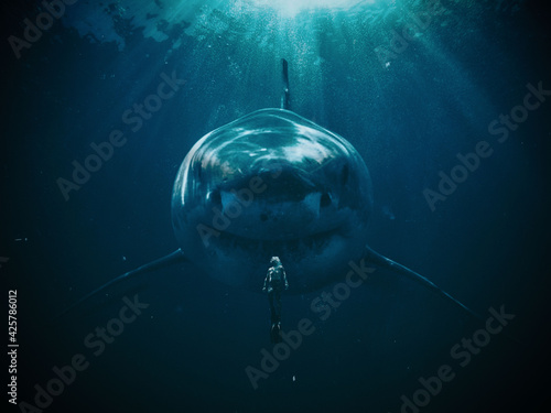 Fototapeta Shark With Men Underwater, Wall Art  obraz