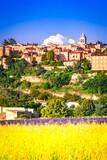 Sault, France - Lavender field landscape in Provence