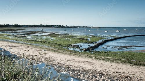 Obraz na płótnie littoral de St-Denis à marée basse