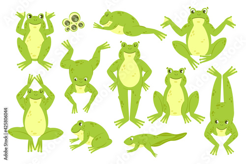 Canvas Print Frog cute vector illustration set
