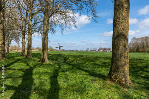 Canvas Print Historic windmill (Stijve Molen) in a typical Dutch polder landscape