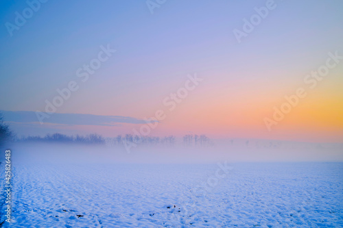 Fotografie, Obraz Sunset in a park with snow