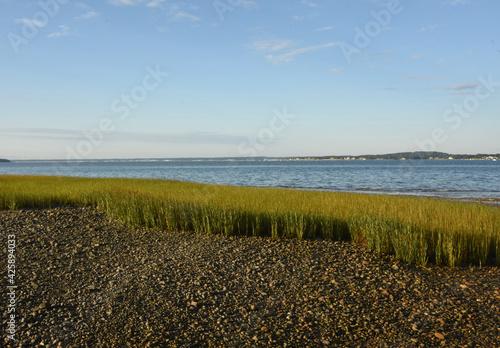 Fotografía Bay Views from Duxbury Bay Beach in the Summer