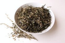 Dried Artemisia Vulgaris, The Common Mugwort. Mugwort Has Been Used Medicinally And As Culinary Herbs. It Is Suitable As An Ingredient In Salads. Medicinal Plant.