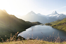 Green Meadows Surrounding Bachalpsee Lake Lit By Sunrise, Grindelwald, Bernese Oberland, Bern Canton, Switzerland