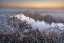 Flooded Ditch And Frost On Coastal Grazing Marsh, Elmley National Nature Reserve, Isle Of Sheppey, Kent, England, United Kingdom