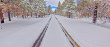 The Road Leading To Kaibab Lake In The Kaibab National Forest Near Williams, Arizona, United States Of America